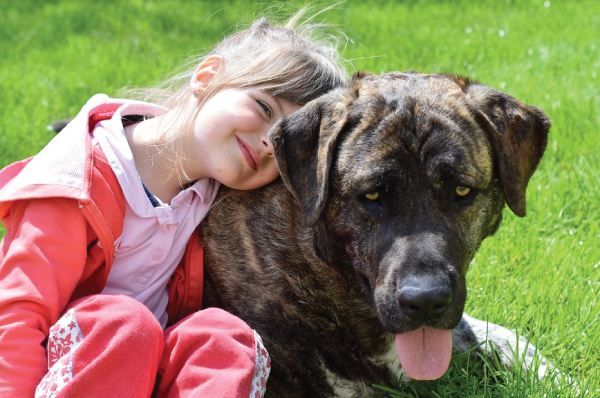 girl and a brown dog